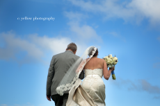 wedding portraits IL
